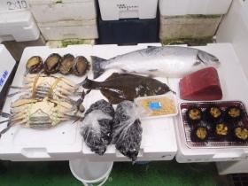 1鮮魚セット201562