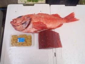 2鮮魚セット201562