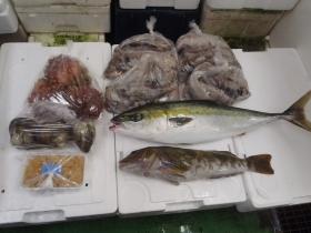 4鮮魚セット201562