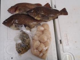 10鮮魚セット201562