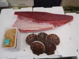 9鮮魚セット201562