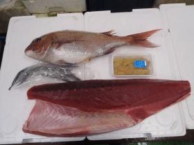 2鮮魚セット201564