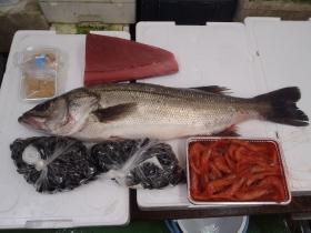3鮮魚セット201564
