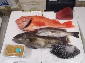 8鮮魚セット201564
