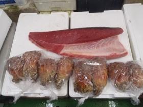 10鮮魚セット201564