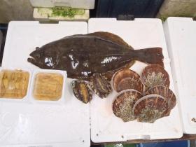 8鮮魚セット2015615