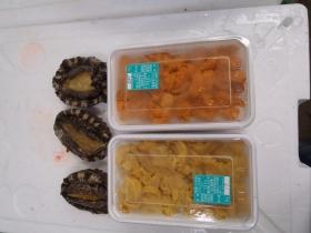 9鮮魚セット2015615