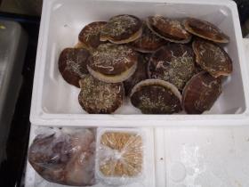 12鮮魚セット2015615