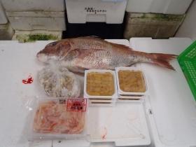 17鮮魚セット2015616