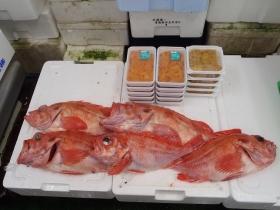 18鮮魚セット2015616