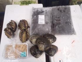 8鮮魚セット2015618