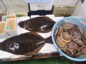 12鮮魚セット2015618