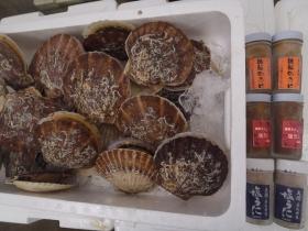 14鮮魚セット2015618