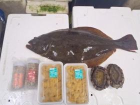 9鮮魚セット2015619
