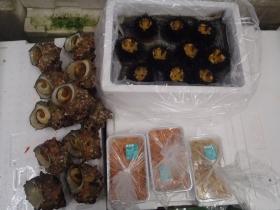 11鮮魚セット2015619