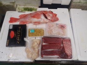 15鮮魚セット2015619