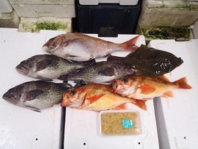 2鮮魚セット2015622