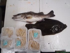 11鮮魚セット2015622