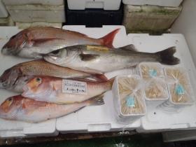 13鮮魚セット2015622