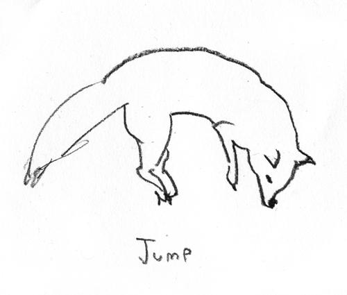 fox110.jpg