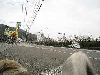 s-IMG_2304.jpg