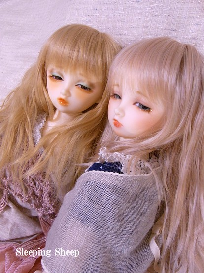 RIMG1648-2迷夢糖花