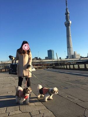 gakutomu2.jpg