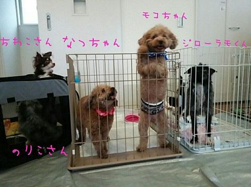 jyoutokai1.jpg