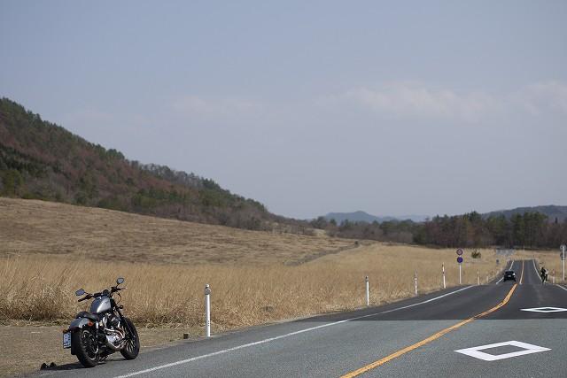 s-14:49三瓶山西の原