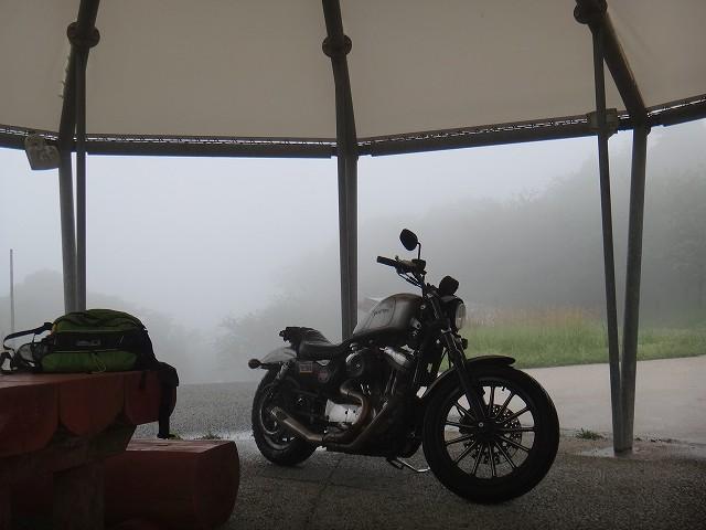s-10:08雨宿り