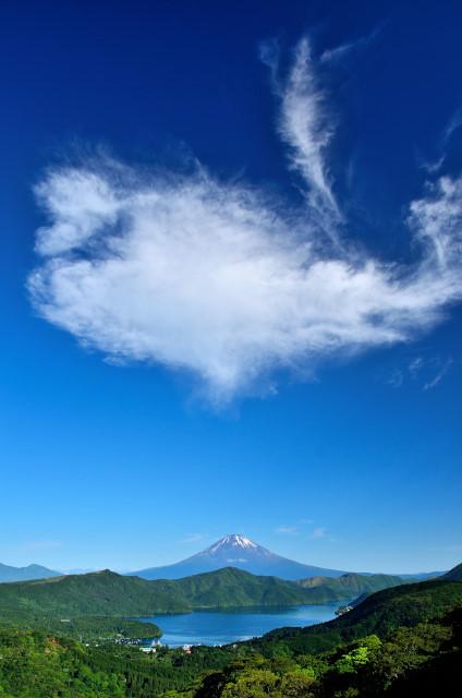 大観山9_01