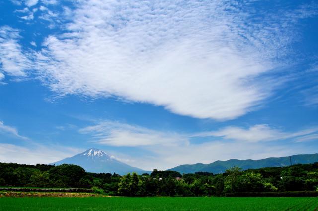 国師ケ岳11_01