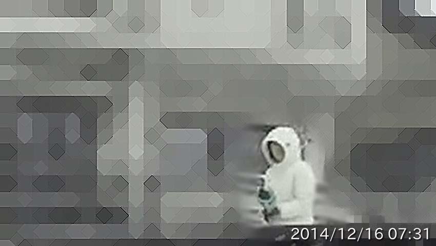 20141216073106b.jpg