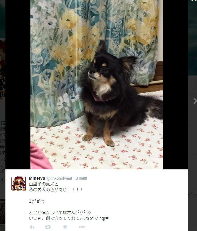 saki46.jpg