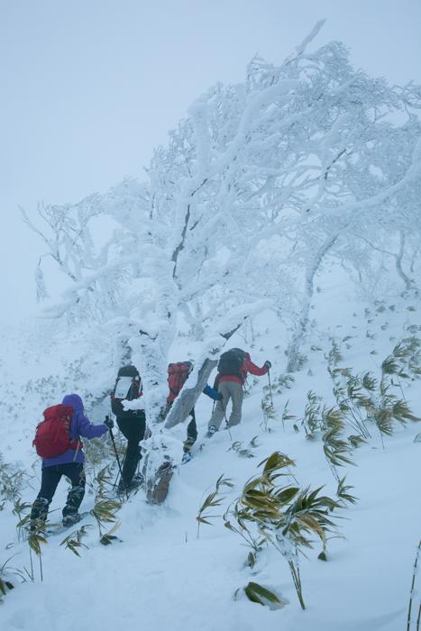 shiraoidake20141228-2428.jpg