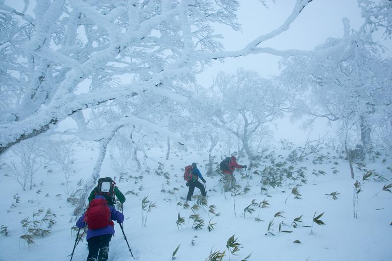 shiraoidake20141228-2431.jpg