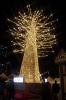 黄金のツリー