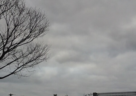 150126_天候