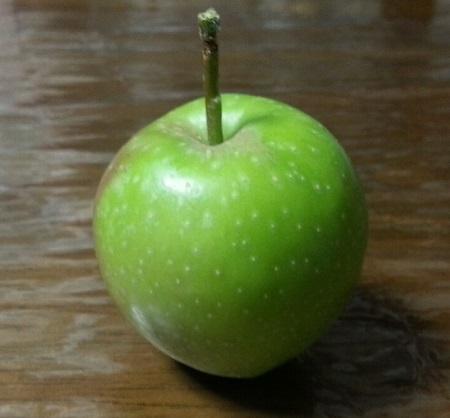 150625_リンゴ