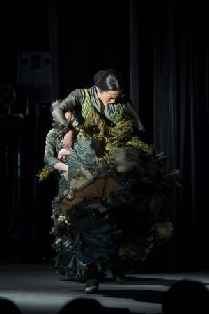 大沼由紀舞踊団 ソノラ6