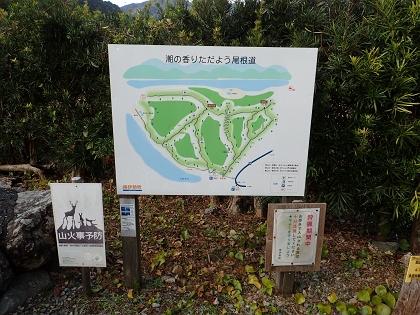 20141213姫越山01