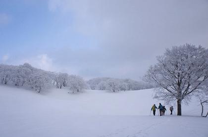20141230御池岳10