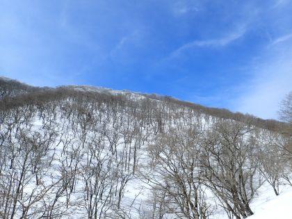 20150207御池岳02