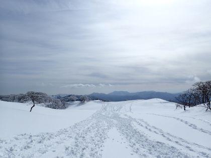 20150207御池岳09