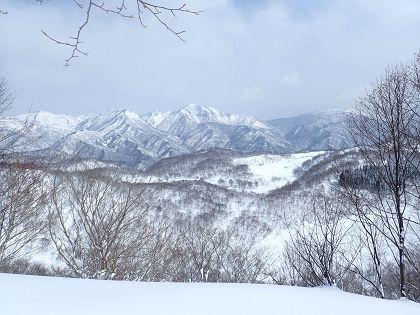 野伏ヶ岳06_420