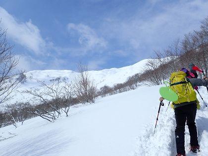 野伏ヶ岳07_420
