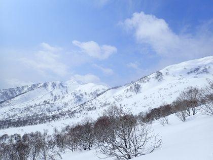 野伏ヶ岳08_420