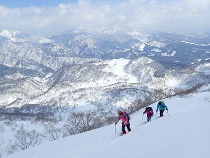 野伏ヶ岳12_420