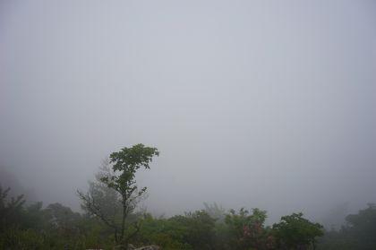 20150607釈迦ヶ岳10