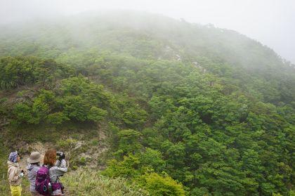20150607釈迦ヶ岳16
